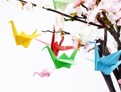 Afbeeldingsresultaat voor origami